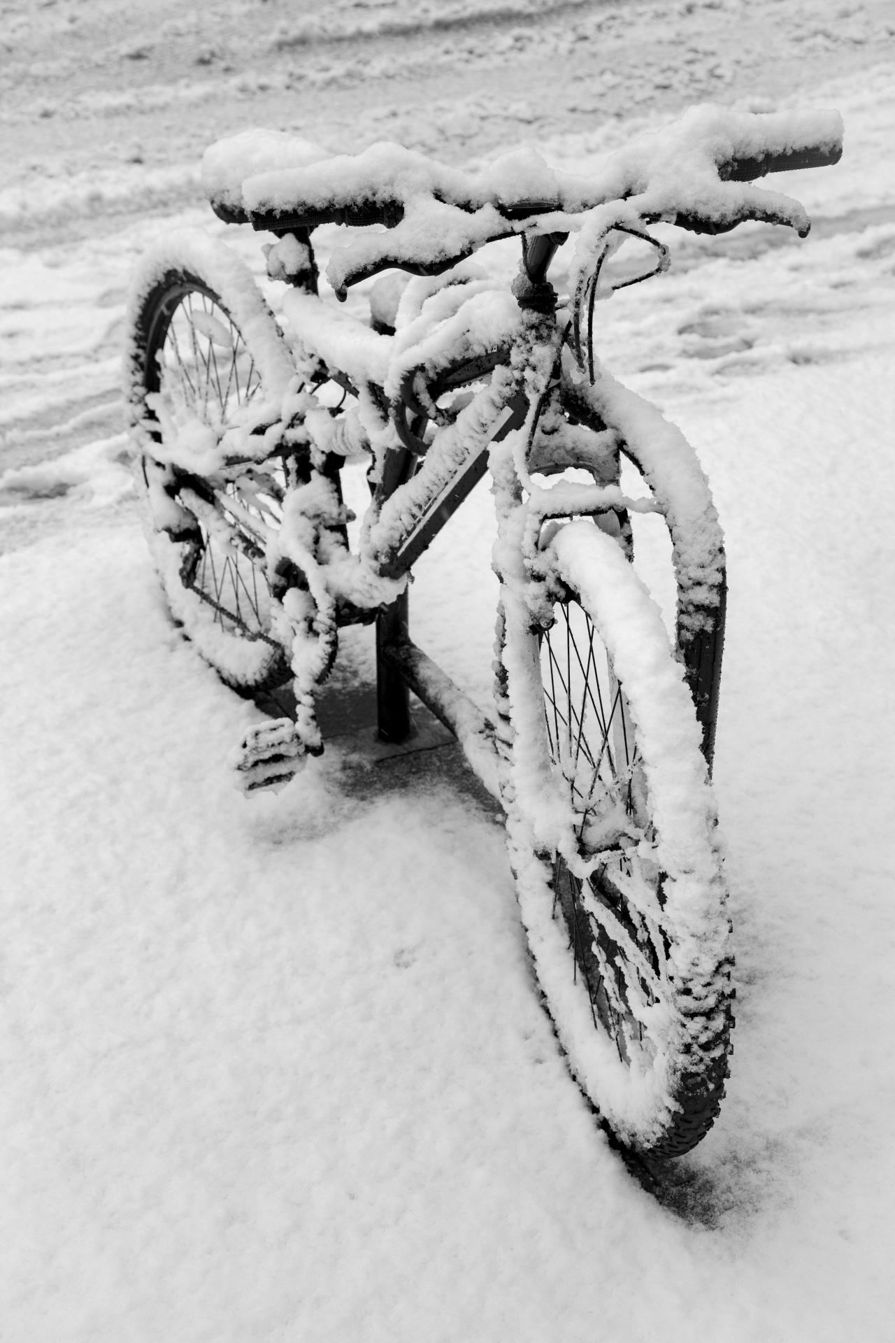 bicycle-1474960171ds1